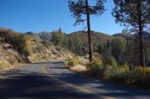 Teel Sierra Nevadas