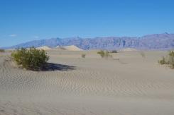 Mesquite tasandiku liivadüünid Surmaoru põhjaosas. Inimese jälgedeta düüni on siin keeruline leida.