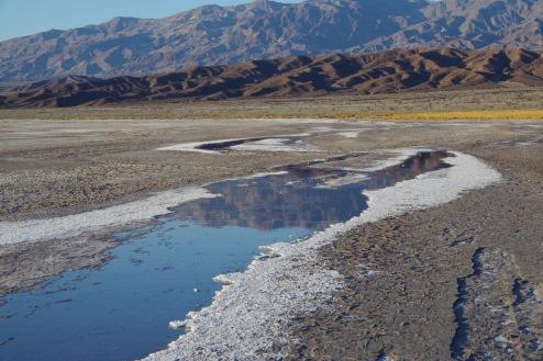 Soolaoja soola-mudastel kallastel.
