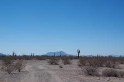 Sonora kõrbe äärealad.