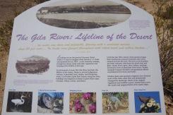 Kunagi oli Gila jõgi ja selle ümbrus õitsev elusoon läbi kõrbe. Paisude ajastul ammu enam mitte.