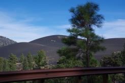 Bonito laavavälja Sunset Crater Volcano lähistel katab eemalt vaadates justkui sametine tuhavaip. Võibolla kannataks siingi kelgutada?