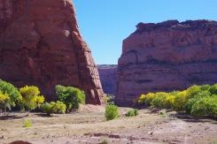 Kanjoni viljakas põhi on tänapäevani kasutuses traditsioonilises põllumajanduses.