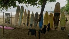 Williami surfikeskus ja punaselipuline Kariibi rand