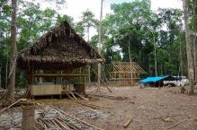 Siia saagu keskus! Uus Ayahuasca keskus keset sügavat džunglit.