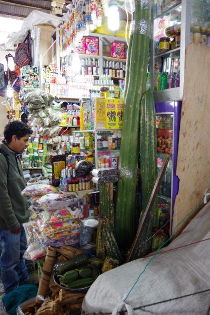 Sõber Carlos takseerimas mapacho-sigareti pakke jõhvikate San Pedro kaktuste ees ja peal. Esiplaanil maas kastitäis kaapi vääte.