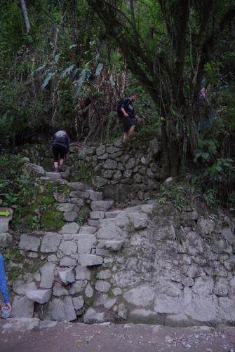 Nii see kulgeb - 700 astet Machu Picchu väravate taha.