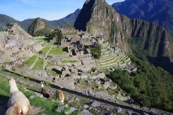 Inkade kadunud linn ja selle tänased ainsad alalised elanikud.