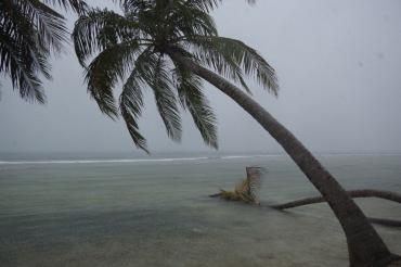 Troopiline soe sadu. Tuult õnneks eriti ei olnud.