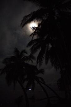 Kariibi öö